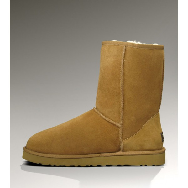 colori ugg boots